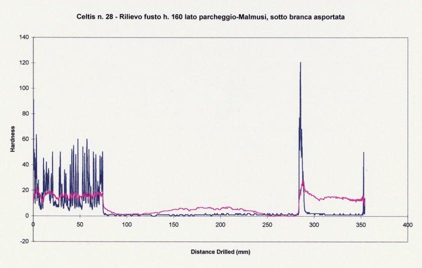 Stabilità degli alberi: grafico del resistografo impiegato per indagare la struttura del legno